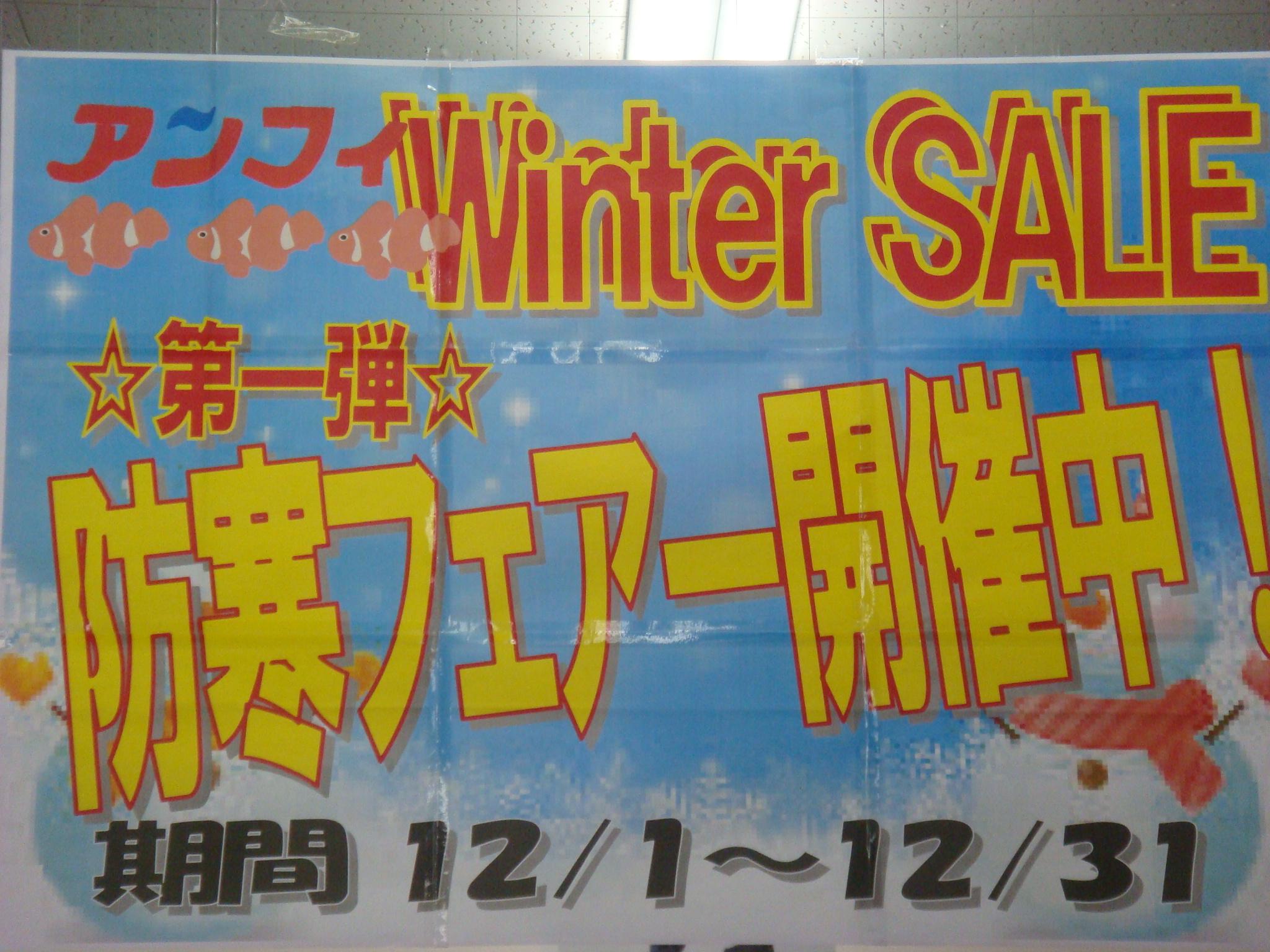 http://www.e-angle.co.jp/shop/blog/DSC02586.JPG