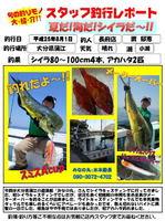 blog-20130801-watari-01.jpg