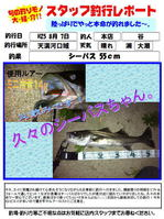 blog-20130807-tani-01.jpg