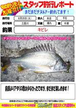 blog-20130820-honten-kibire.jpg