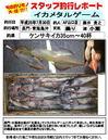 monthly_short_2013_07_30_fujii.jpg