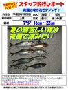 monthly_short_2013_07_30_matumaru.jpg