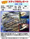 monthly_short_2013_08_01_kusumoto.jpg