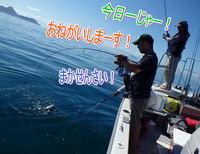 ayumi14.jpg