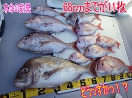 ayumi19.jpg