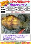 blog-20130910-kaiyuu-aori.jpg