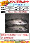 blog-20130912-hikoshima-suzuki.jpg