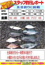 blog-20130915-hikoshima-gomokujpg.jpg