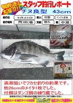 blog-20130923-hikoshima-chinu-.jpg