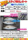 blog-20130923-shinshimo-hata01.jpg