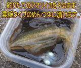 okizuke1.jpg
