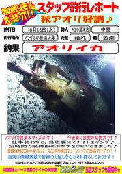 blog-201301018-aori.jpg