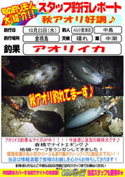 blog-201301024-aori.jpg