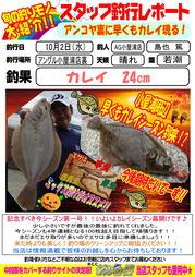 blog-20131002-karei.jpg