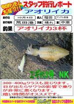 blog-20131005-hikoshima-ika-.jpg