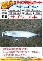 blog-20131007-hikoshima-sago-.jpg