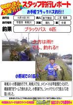 blog-20131010-sinsimo-ninomiya.jpg