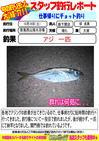 blog-20131021-shinshimo-hata.jpg