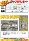 blog-20131023-ooshima-gurearaki.jpg