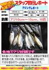 blog-20131029-shinshimo-hata.jpg