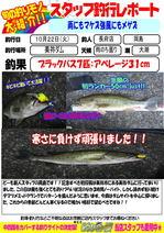 blog-choufu-20131022-okajima.jpg