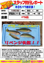 blog-choufu-20131028-yonemura.jpg
