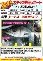 blog-20131011-miki-hama.jpg