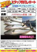blog-20131031-houfu-hamachi.jpg