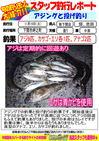 blog-20131119-shinshimo-hata,ikeda.jpg