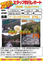 blog-20131128-miki-miyawaki.jpg