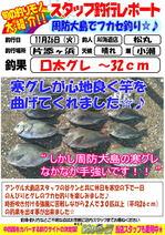 blog-20131129-kaiyuu-kangure.jpg