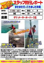 blog-choufu-2013110506-watari.jpg