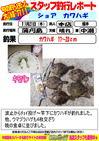 blog-honten-20131121-kawahage.jpg