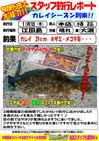 news-20131107-honntenn-karei.jpg