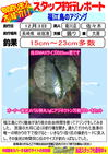 blog-20131203-kikugawa-ajinngu.jpg