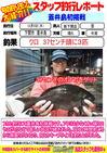blog-20131205-shinshimo-hata.jpg