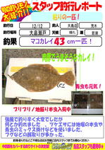 blog-20131212-ooshimaten-002.jpg