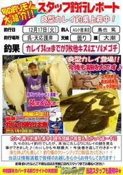 blog-20131217-tennou-karei1.jpg