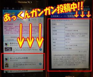 blog-20131223-yoshiura-karei4.jpg