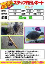 blog-20131225-ooshima-asahinakarei.jpg