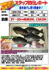 blog-choufu-20131217-hayashi.jpg