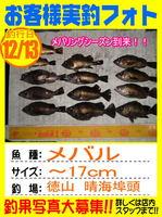 phito-okyakusama-20131215-tokuyama-mebaru.jpg