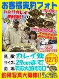 photo-okyakusama-20131201-tennou-karei.jpg