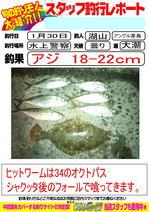 bblog-20140131-hikoshima-aji-.jpg