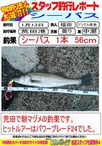 blog-20140113-hikoshima-suzuki-.jpg