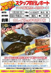 blog-20140123-yoshiura-karei1.jpg