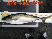news-20131231-honten-mizunosama.jpg