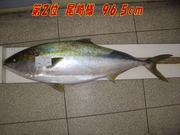 news-20131231-honten-ozaki2.jpg