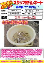 blog-20140126-shinshimo-hata.jpg