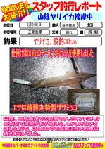blog-20140209-sinsimo-hata.jpg